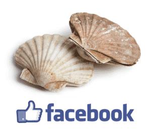 facebook fruitsdelamer recettes cuisine fruits de mer cuisson coquillages crustacés poissons