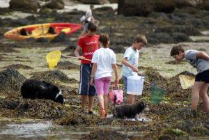 pêche à pied conseils règles enfants