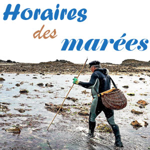 Calendrier Des Marees La Rochelle 2020.Horaires Des Marees Heures De Haute Et Basse Mer Des