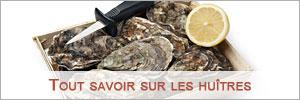 conseils achat huîtres tailles indice de chair