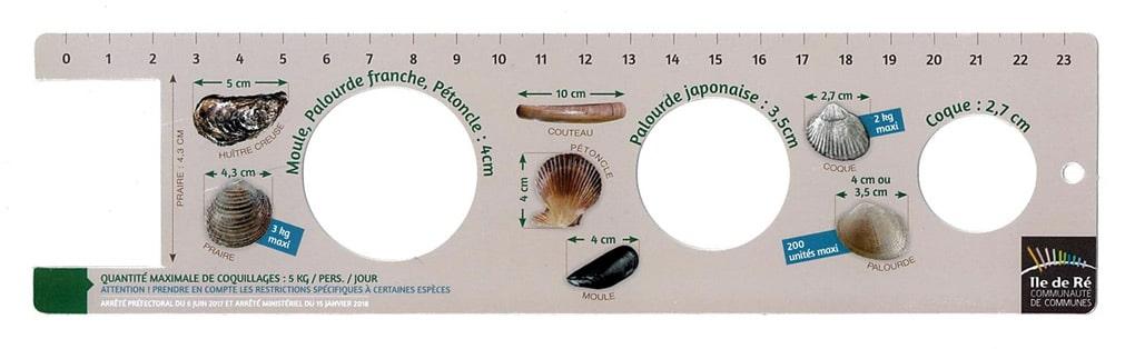 pêche à pied règle pour mesurer les coquillages