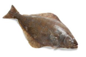 fletan poisson recette cuisine cuisson
